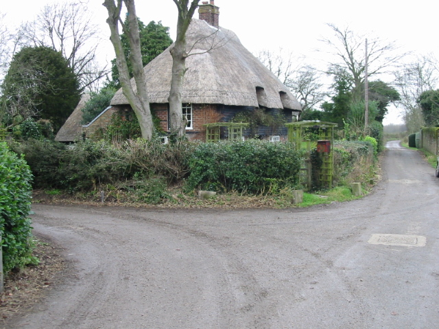 Thatched cottage on The Street /  Pond Lane