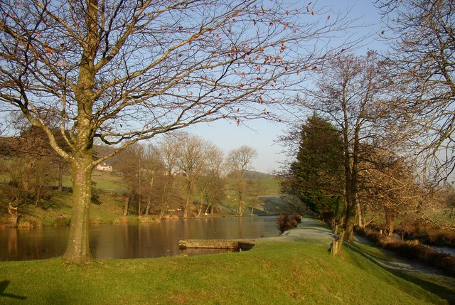 Conder Mill Pond, Scotforth