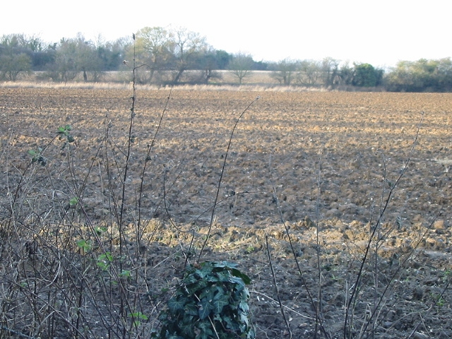 View across the fields to the disused railway line
