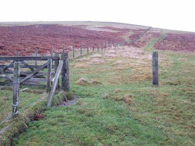 Fence on Whiteside Hill