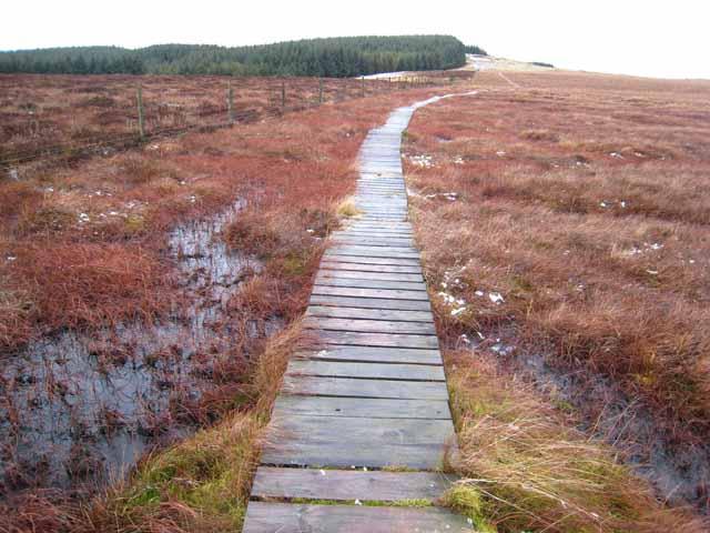 Boardwalk on the Pennine Way