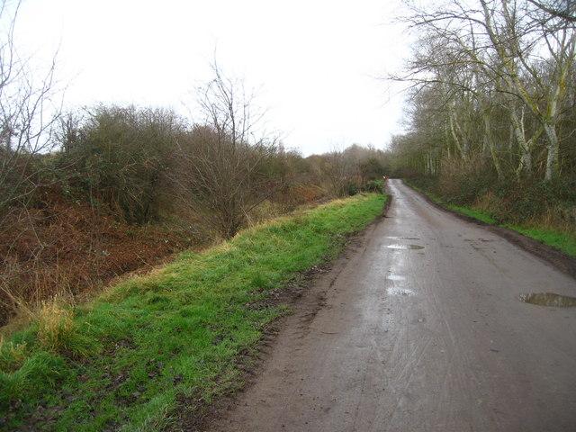 Farm track & railway cutting