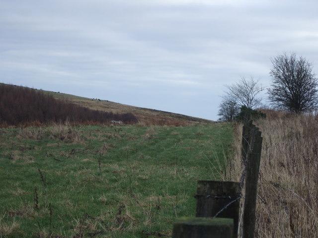 Millstone Cleugh