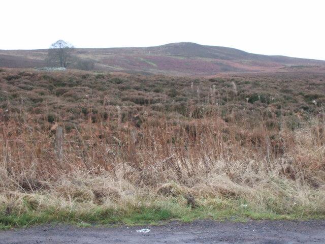 Longframlington Moor