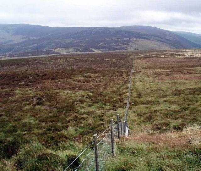 Boundary line fence