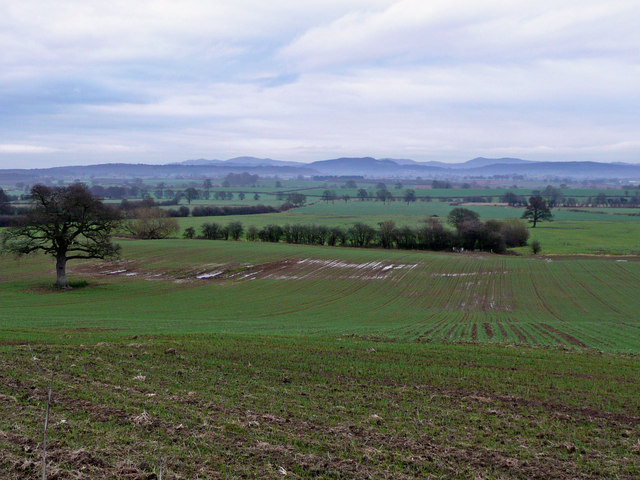 East Herefordshire countryside