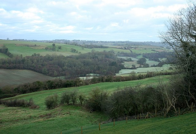 2007 : Valley of the Wellow Brook