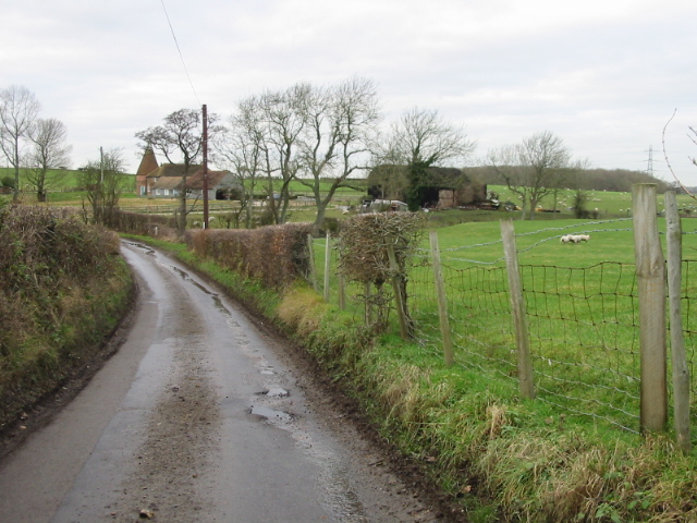 View along Southenay Lane to Water Farm