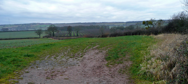 Countryside south of Aylton Court