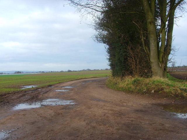 Lane leading to Dodecote Grange