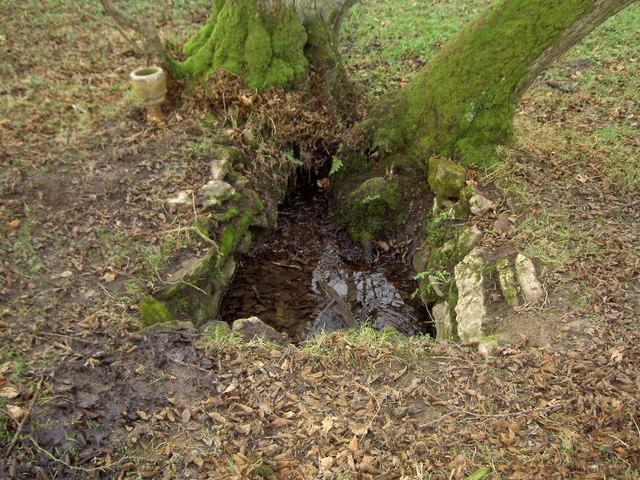 St. Tegla's Well, Llandegla.