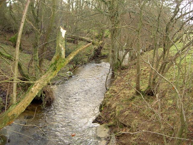 River Alyn near Llandegla.
