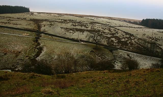 Looking Across Elm Gill
