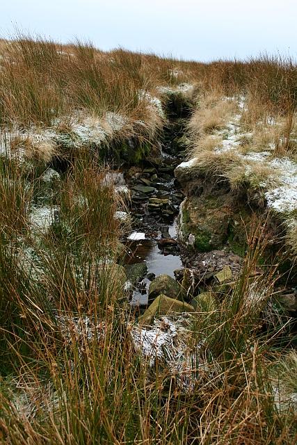 Unnamed Brook on Fleensop Moor