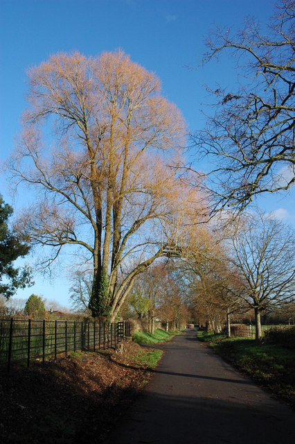 Road to Apperley Court