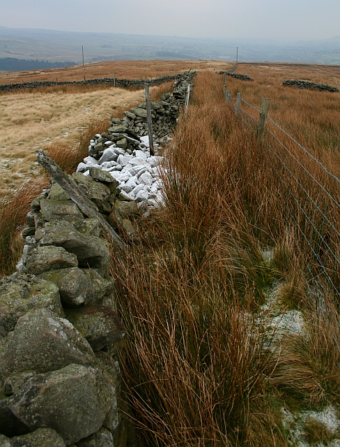 Drystone Wall on Horsehouse Moor (2)