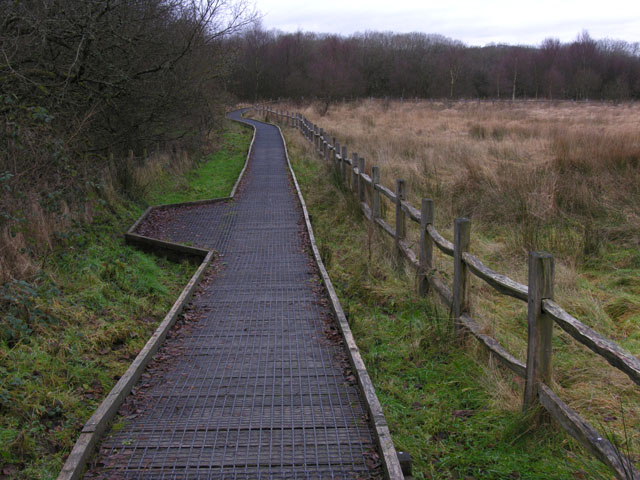 Path in the Cors Caron Nature Reserve