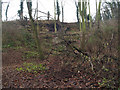 SE4706 : Rock outcrop Watchley by Steve  Fareham