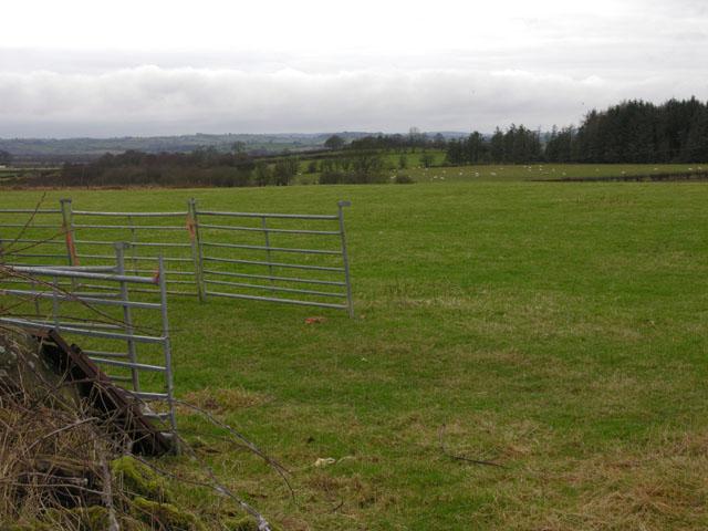 Fields south of Pontrhydfendigaid
