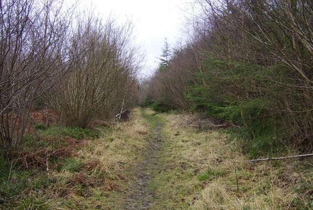Mary Knoll Muddy Walk