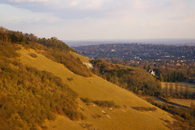 Scarp slope of Colley Hill