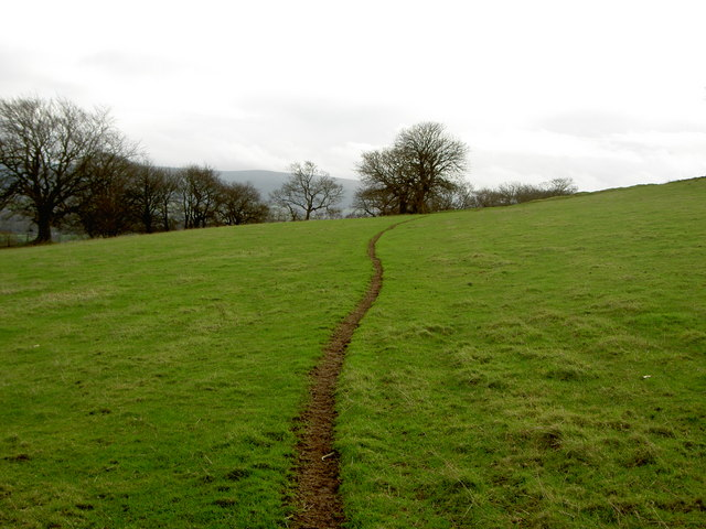 Footpath on slopes of Moel y Waun.