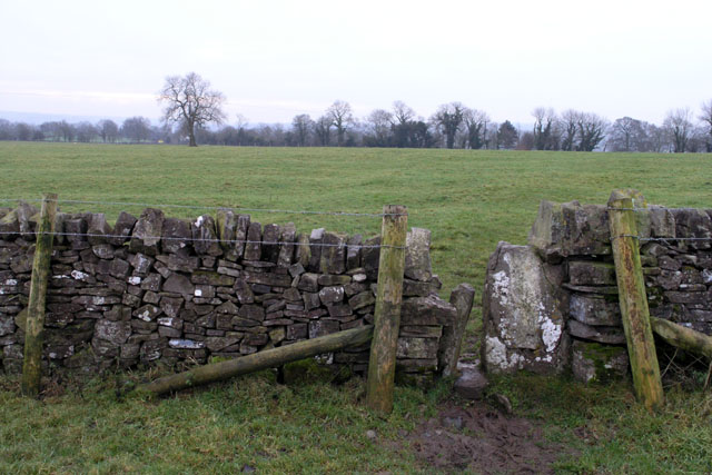 Stile on The Limestone Way, near to Thorpe