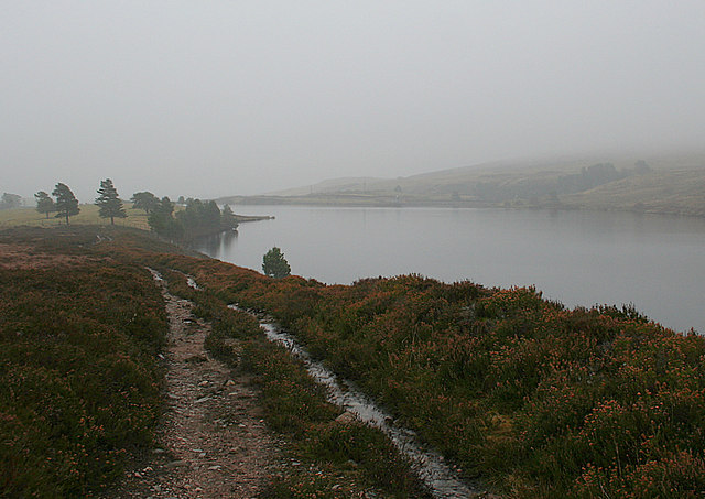 An easterly view from the track by Clunas reservoir
