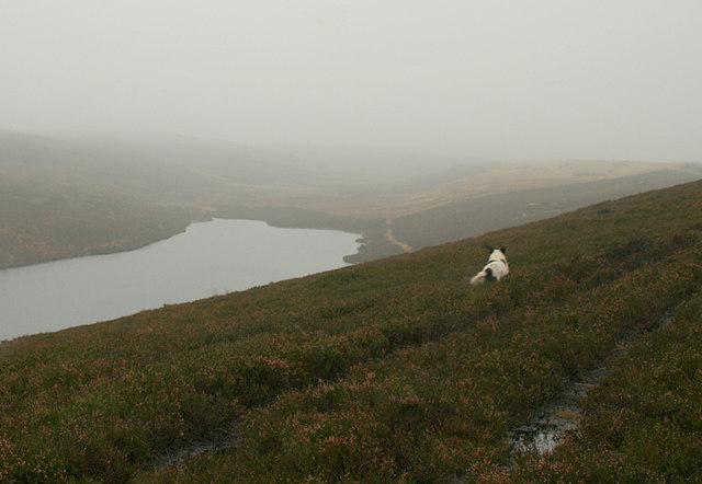 Southwesterly aspect from Carn Mor over Clunas reservoir