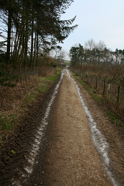 Farm Track at Fleensop