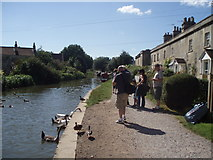ST7766 : Towpath at Bathampton by Basher Eyre