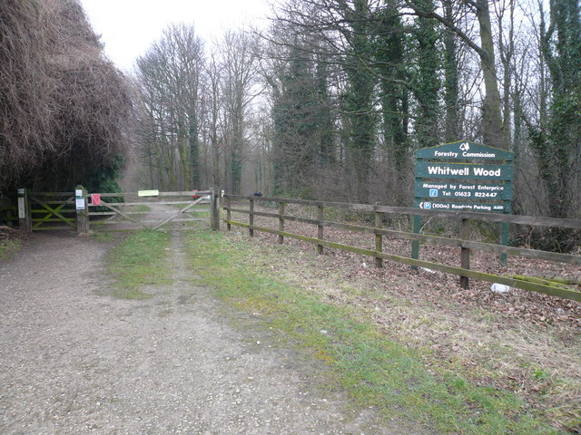 Gateway to Whitwell Wood