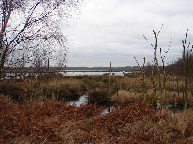 Flooded Area in Humberhead Peatlands National Nature Reserve