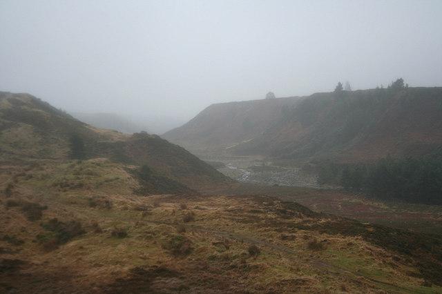 Beauty in the mist by the glen of Riereach Burn
