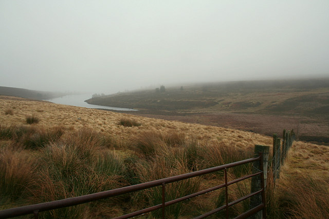 Sheep fencing by Clunas reservoir