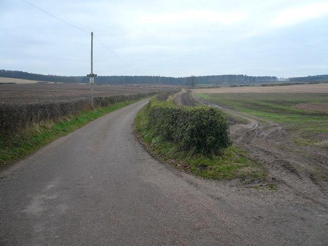 Lane to Park House Farm