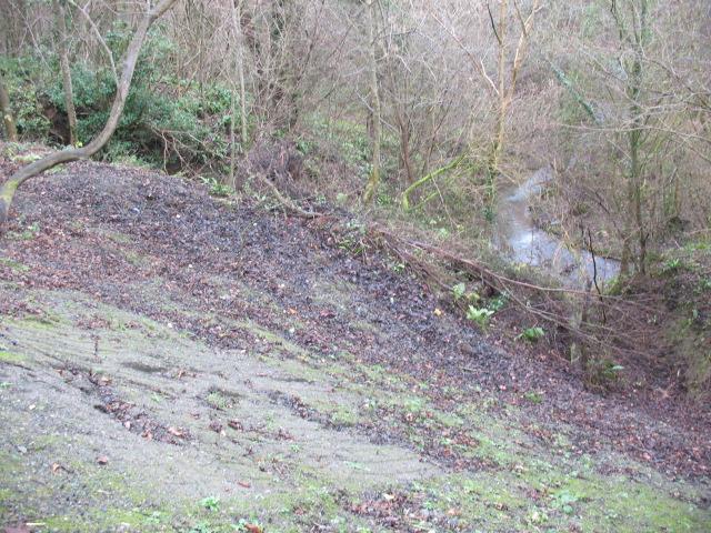 Landslip on steep bank