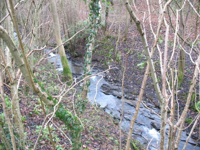 Rowley Brook