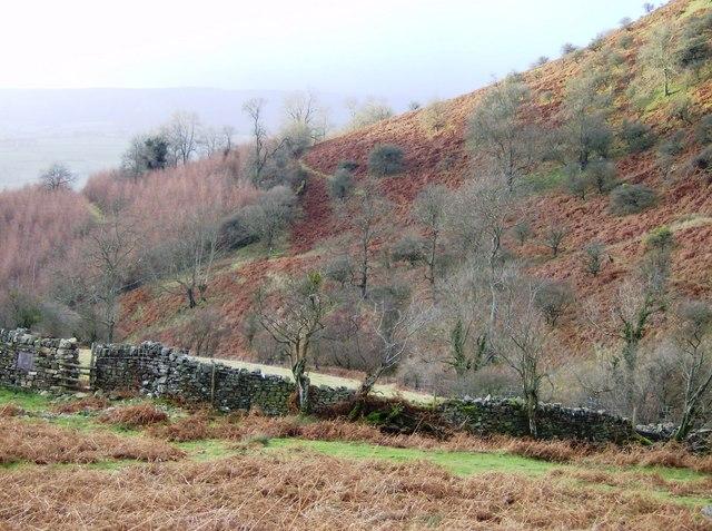 Beacons Way above Cwm Mawr