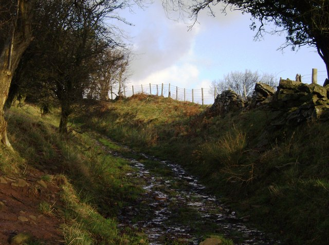 Path ascending Tal Trwynau