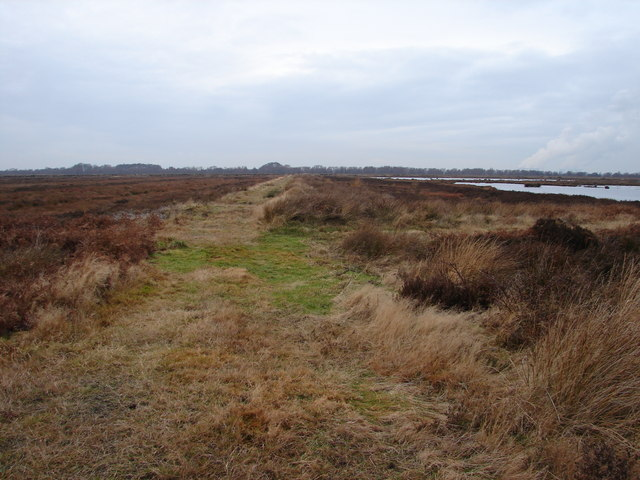 Looking Westwards from Humberhead Peatlands National Nature Reserve