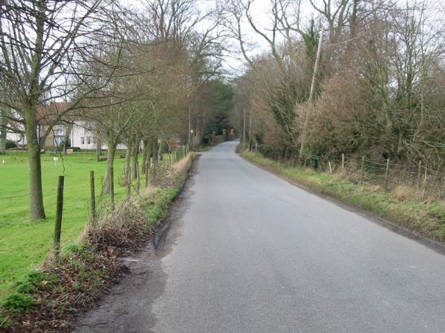 Looking NW along Longage Hill
