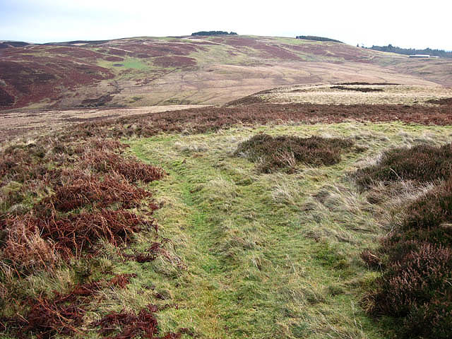A grass track on Hummel Side