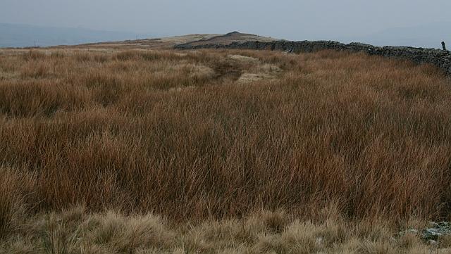Bridleway Over Horsehouse Moor