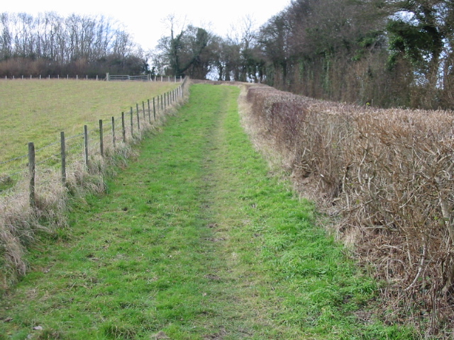 Path at edge of field