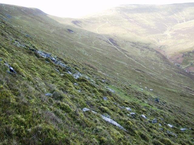 Below Mynydd Llysiau