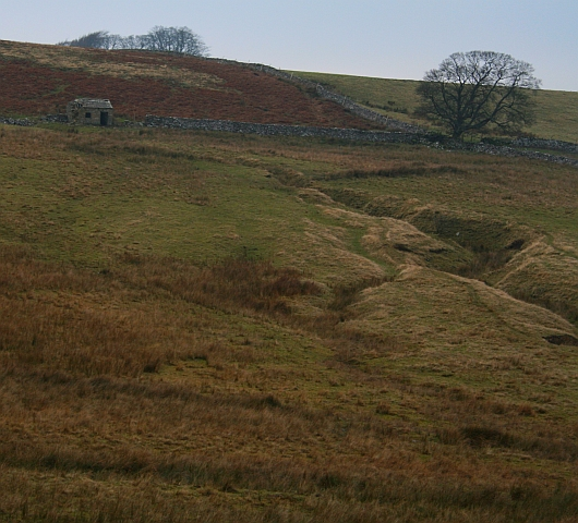 Small Building and Sheepfold on Carlton Moor