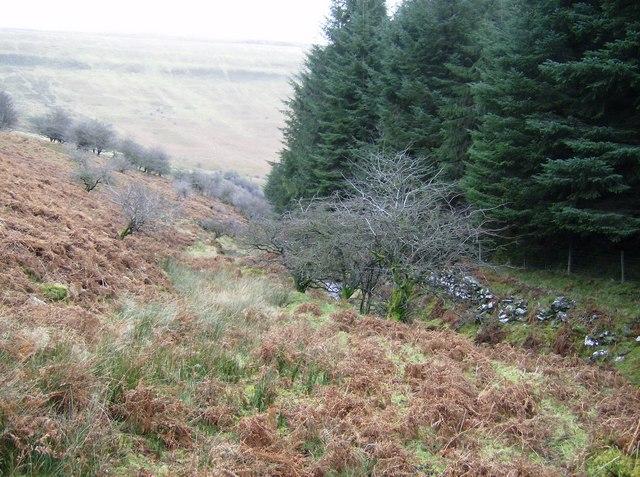 Descent beside the Gargwy Fawr