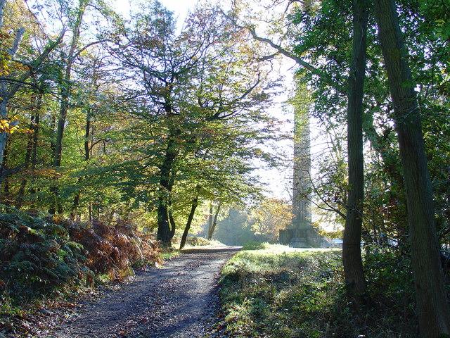View of Ashridge Monument, Autumn morning