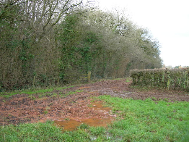 Muddy Footpath at a Field Boundary, near Wells